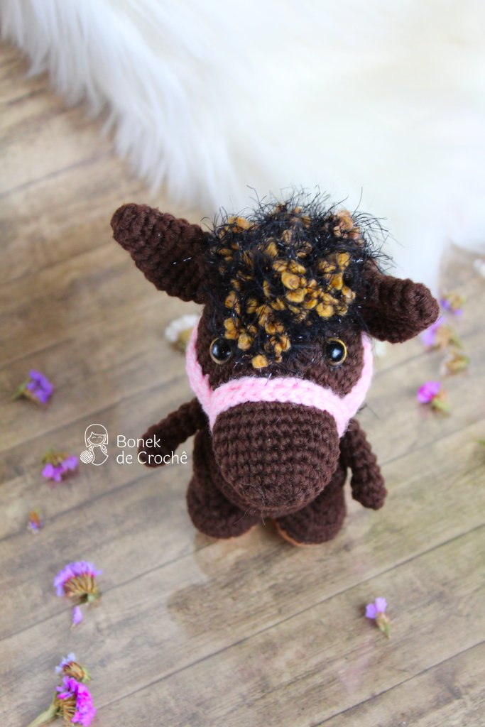Pony always says that adventures should be lived together with friends. That's why this smart little horse is looking for new adventures companions.